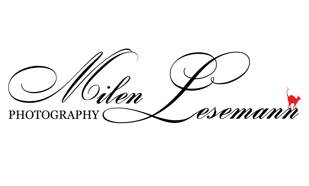Leseman---Logo
